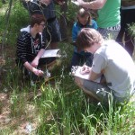 Students in Castlegar monitoring camas density in Twin Rivers Park.