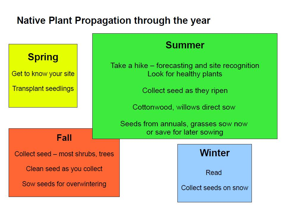Propagation Year