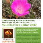 Join us for a Wildflower Walk