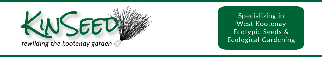 KinSeed Logo Banner