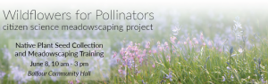 Native Plant Seed Collection and Meadowscaping Training @ Balfour Community Hall